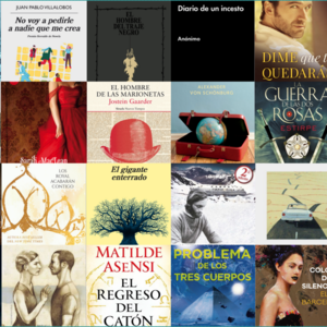 Profile 48fa60a236d5a03769b1671516493210 los 24 libros de 2017